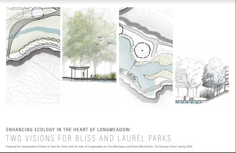 Two Visions for Bliss and Laurel Parks front page image Opens in new window